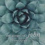 The Gospel of John: A Simply Bible Study